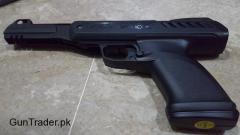 Best option For Hunters or Shooting Begineers