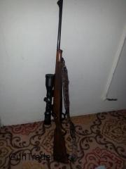 Winchester Model '70 243 cal.