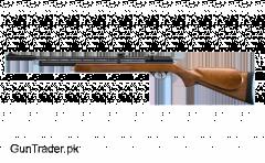 ARTEMIS PCP AIRGUN PR900W