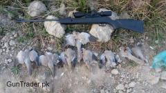 Gamo shadow 1000 gamo whisper x silent cat new airgun